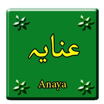 Inaaya Name Meaning in Urdu